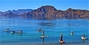 OnBoardSUP Sea of Cortez